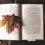 読書の効果